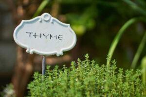 dietitian,healing herbs,organic herbs,health websites,healing scriptures