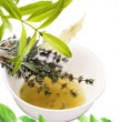 live herb plants ,drying herbs,health advice,healths,different herbs,